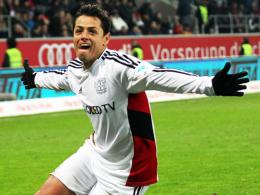 """""""Man kann nie wissen, was passiert"""": Leverkusens Topstürmer Javier Hernandez lässt viel Interpretationsspielraum."""