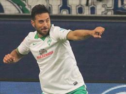 Pizarro: Die Sehnsucht nach dem Heimtor
