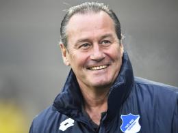 """""""Wir haben 15 Endspiele"""": Hoffenheims Cheftrainer Huub Stevens."""