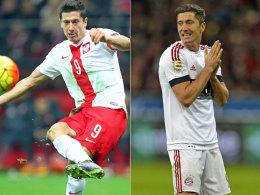 Stark für Polen, stark für die Bayern: Stürmer Robert Lewandowski.