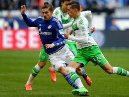 Roman Neustädter, FC Schalke 04