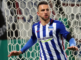 Vedad Ibisevic, Hertha BSC