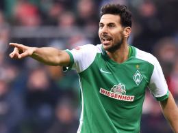 Mit 37 Jahren unumstrittener Leistungsträger: Werder Bremens Angreifer Claudio Pizarro.