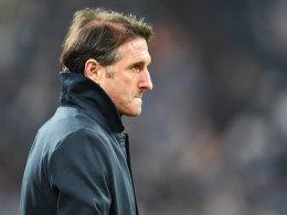 Bruno Labbadia auf Schalke