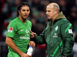 """""""Pizarro ist ein überragender Spieler"""": Hannovers Trainer Thomas Schaaf kennt den Peruaner bestens aus Bremer Zeiten."""