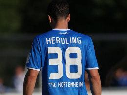 Hoffenheims Urgestein Herdling bangt um seine Karriere