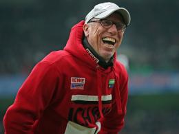 Peter Stöger, Trainer 1. FC Köln