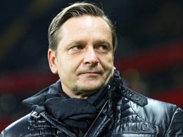 """""""Es werden viele Spiele auf Augenhöhe sein"""": Schalkes Sportvorstand Horst Heldt."""