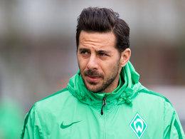 Trainingsabbruch! Werder bangt um Pizarro