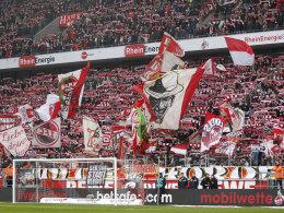 Fans in Köln