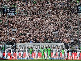 Europa League oder K�nigsklasse: Ein Unterschied von 20 Millionen Euro!