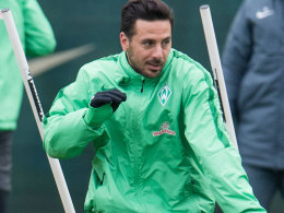 Ansto� von den Profis: Werder nach Verden