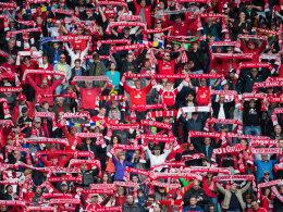 Geldstrafen f�r Mainz und Leverkusen