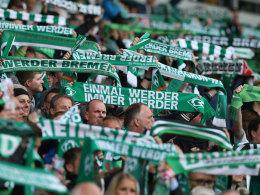 Gefahr von rechts: Werder sagt Test gegen Lazio ab