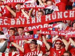FC Bayern steigert Mitgliederzahlen