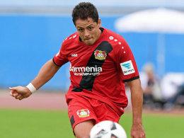 Bayer bleibt unbesiegt - 1:1 gegen Porto