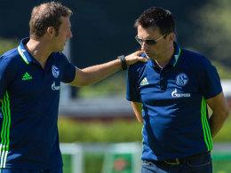 Schalker Doppeldeal fast durch - Offensivmann im Anflug