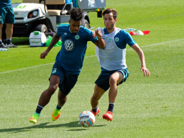 Kreuzbandriss! Azzaoui fehlt Wolfsburg lange
