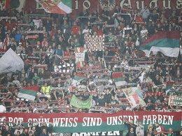 """""""Traditionstag"""" statt Spieltag: Viele Fans bleiben in Augsburg."""
