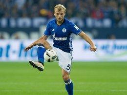 Länderspielpause blockiert Schalkes Weiterentwicklung