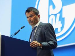 Schalke: Rekordzahlen, neuer Ausrüster und Goretzka
