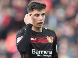 Offiziell: Havertz verlängert bei Leverkusen bis 2022
