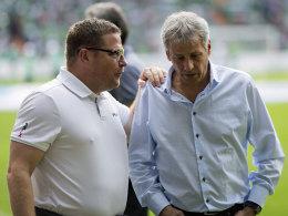 Gladbach feiert Wiedersehen mit Favre