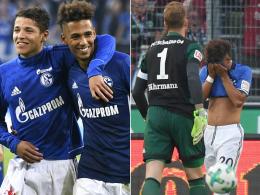 Kehrer: Schalke weiter