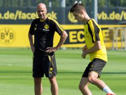 Bosz lobt Yarmolenko und bittet Weigl um Geduld