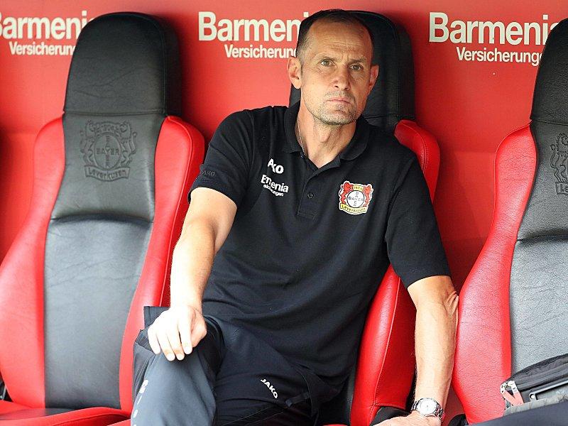 Baumgartlinger schlägt mit Leverkusen Freiburg