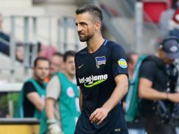 Schiedsrichterbeleidigung: Ibisevic für zwei Spiele gesperrt