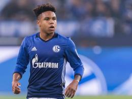 McKennie verlängert auf Schalke bis 2022