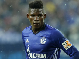 Schalke bangte um Embolos Karriere