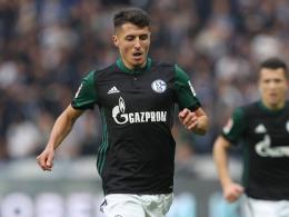 Schalke: Schöpf erweitert Tedescos Optionen