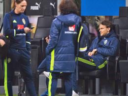 HSV auf Schalke ohne Ekdal