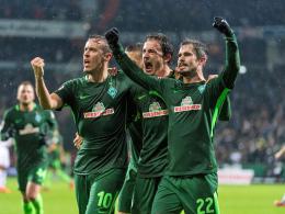 LIVE!-Bilder: Effizientes S04 - Werder im Rausch