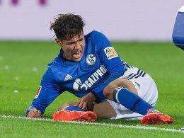 Harit: Schalkes Derbyheld