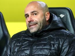 Dortmunder Offenbarungseid: Bosz nicht mehr zu halten