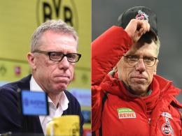 Peter Stöger sorgt für ein Novum in der Europa League