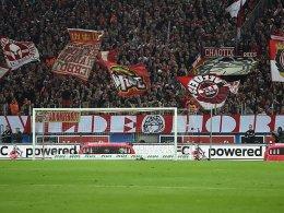 1. FC Köln kontra Ultra-Hetze: