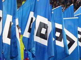 Geldstrafen für den HSV und Mainz 05