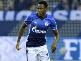 Bis 2019: Schalke leiht Baba erneut aus