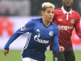 Schalke schwächelt bei den Aufsteigern