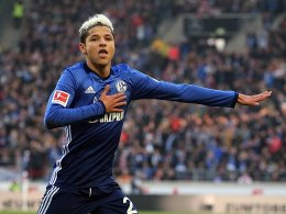 Schalke: Rekordverdächtige Breite beim Elfmeter