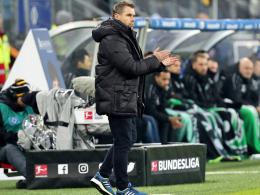 HSV: Tristesse auch unter Hollerbach