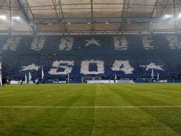 Schalke macht Verlust, ist aber nicht unzufrieden