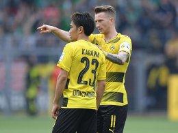 Stöger geht keine Wette bei Kagawa und Reus ein
