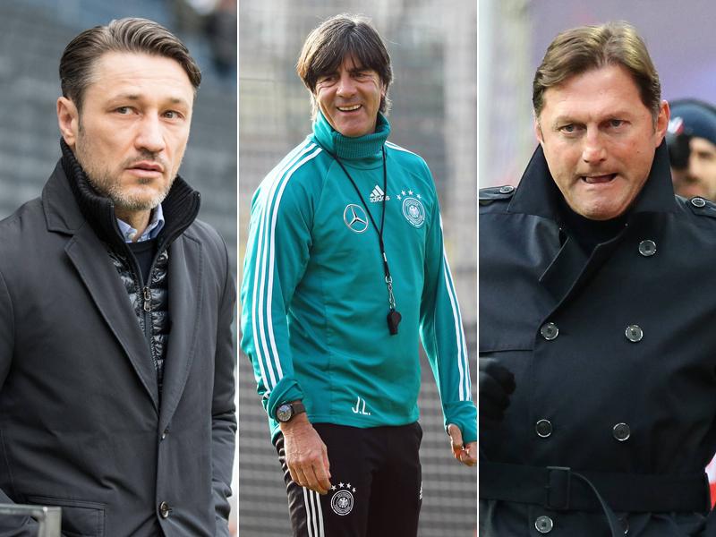 BILD-Bericht Bayern und BVB kämpfen um Hasenhüttl