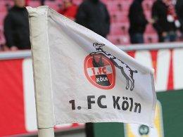 Zieler-Beleidigungen: Geldstrafe für den 1. FC Köln