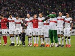 VfB gastiert im Mai in Halle und Zwickau